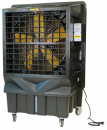 Охладитель воздуха Master BC 220 в Самаре